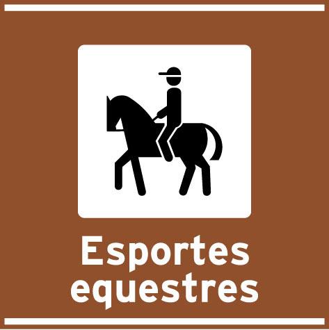 Esportes equestres