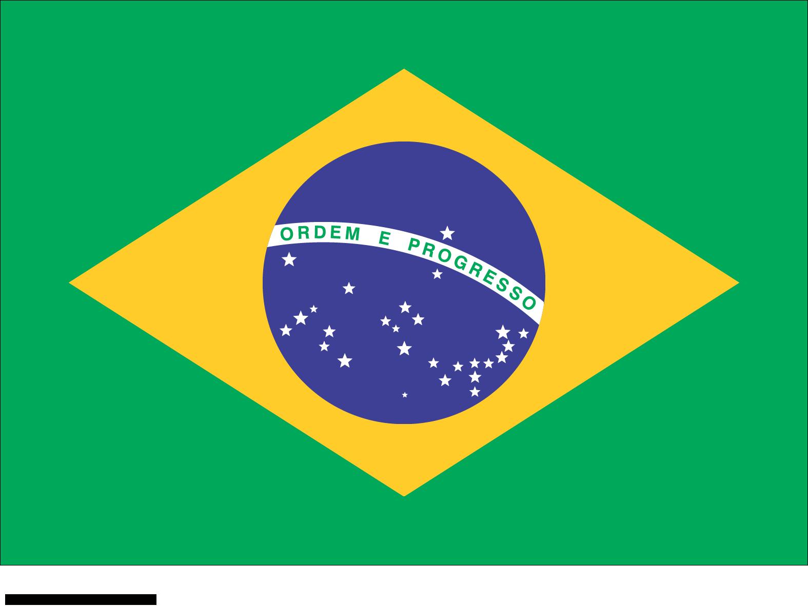 bandeira do brasil detalhada clicavel